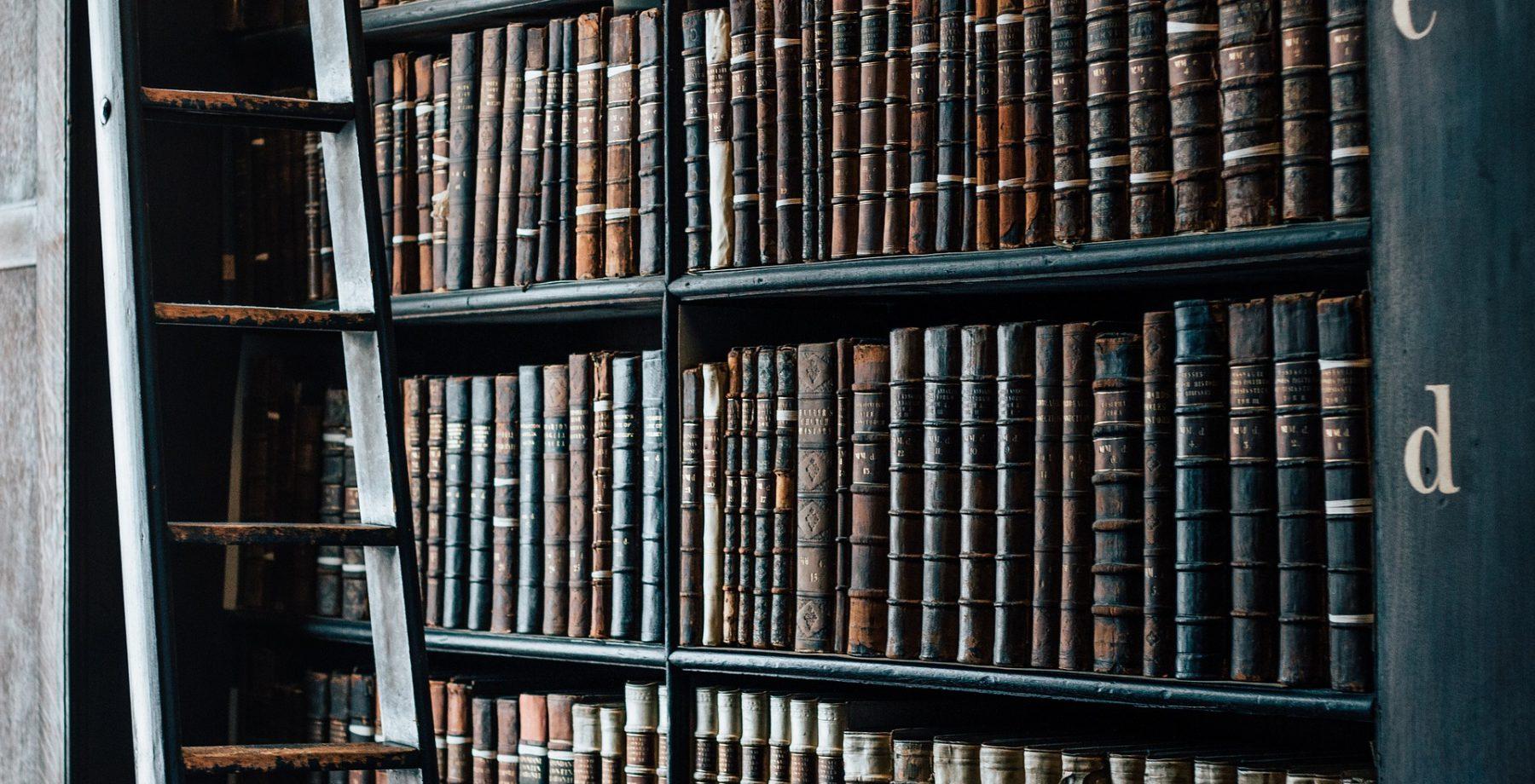 03_bookshelf-1082309_1920